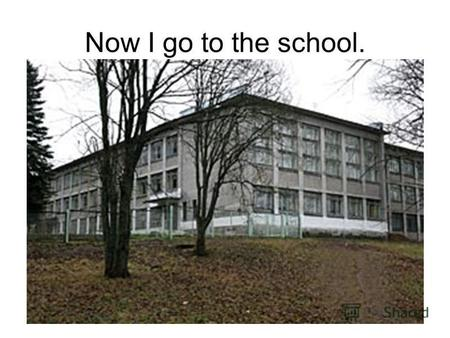 Now I go to the school.. In future I will go to the institute and learn there!