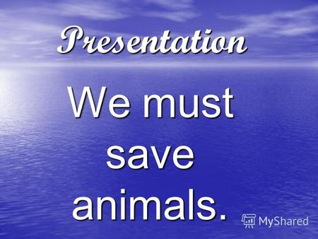 Presentation We must save animals.. Do you know that… Sharks Sharks Shark live in all parts of the world. There are 250 different sharks. All sharks eat.