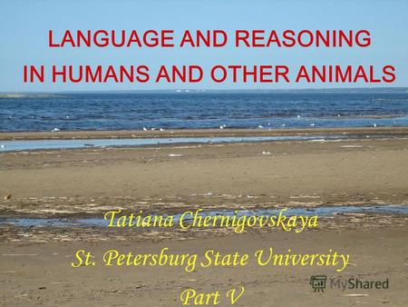 LANGUAGE AND REASONING IN HUMANS AND OTHER ANIMALS Tatiana Chernigovskaya St. Petersburg State University Part V.