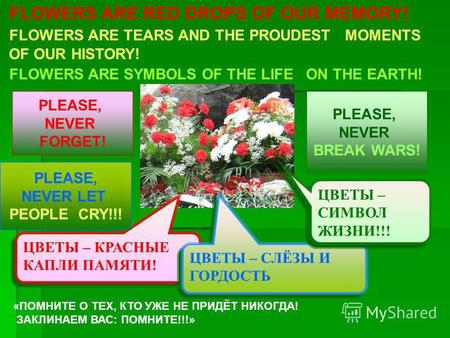 FLOWERS ARE RED DROPS OF OUR MEMORY! FLOWERS ARE TEARS AND THE PROUDEST MOMENTS OF OUR HISTORY! FLOWERS ARE SYMBOLS OF THE LIFE ON THE EARTH! ЦВЕТЫ – КРАСНЫЕ.