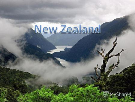 Landscape of New Zealand is different. There are many hills, mountains and plains.
