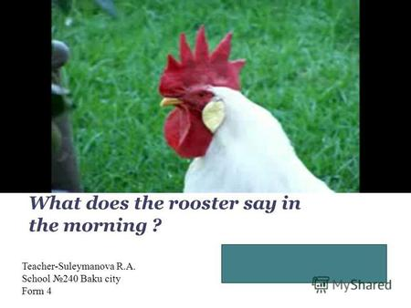 Good, morning! It is time, time to get up! What does the rooster say in the morning ? Teacher-Suleymanova R.A. School 240 Baku city Form 4.