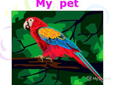 My pet My pet I have a pet. He is a par- rot. His name is Kesha. My pet is five. He is red, blue and yellow. My parrot is big. I teach him to talk. My.