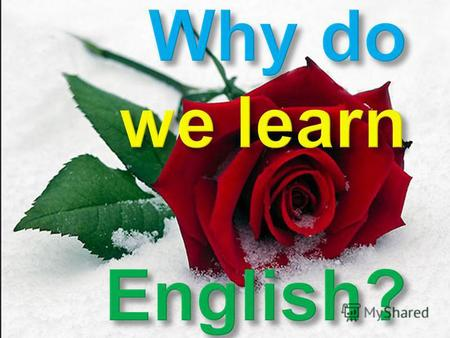 Wherever you go, you need English Actuality o f this work causes no doubts, as English is widespread now in all spheres of our life. About the quarter.