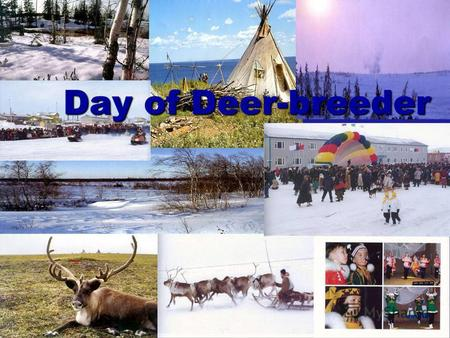 Day of Deer-breeder. We live in Yamalo – Nenetsky autonomous region. YNAR is located in the Far North of the Russian Federation and in the north of the.