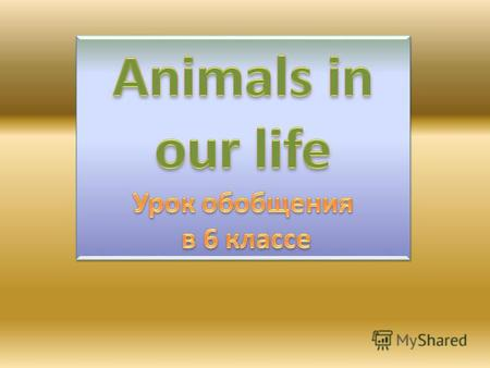 Choose and read: Zoo animals, Domestic animals, Pets Monkey guinea –pig horse hamster cow elephant snake pig donkey parrot camel crocodile rabbit fish.