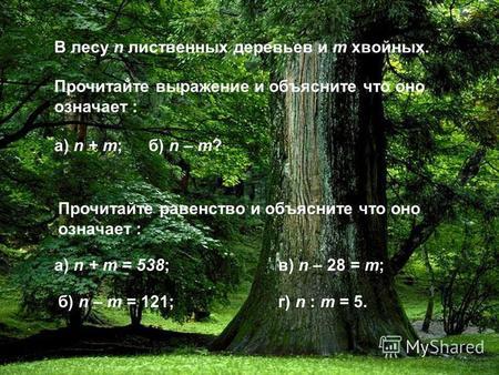 гайдар елка в тайге скачать бесплатно