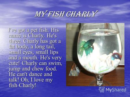 MY FISH CHARLY I've got a pet fish. His name is Charly. He's three. Charly has got a fat body, a long tail, small eyes, small lips and a mouth. He's very.