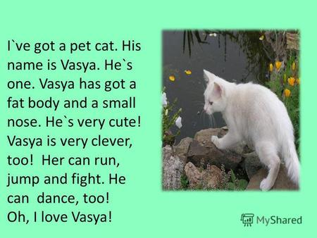 I`ve got a pet cat. His name is Vasya. He`s one. Vasya has got a fat body and a small nose. He`s very cute! Vasya is very clever, too! Her can run, jump.