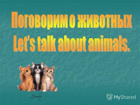 Find the pairs Teeth Teeth Feet Feet Eye Eye Hand Hand Tooth Tooth Ear Ear Neck Neck Nose Nose Tail Tail Хвост Хвост Зуб Зуб Нос Нос Зубы Зубы Глаз Глаз.