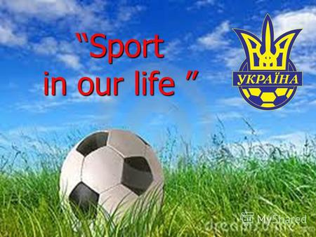 Sport in our life Sport in our life My favourite sportsman.