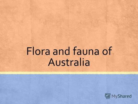 Flora and fauna of Australia. Waratah Plants include living fossils such as the cycad palm and the grass tree, and brilliant wildflowers such as the waratah,