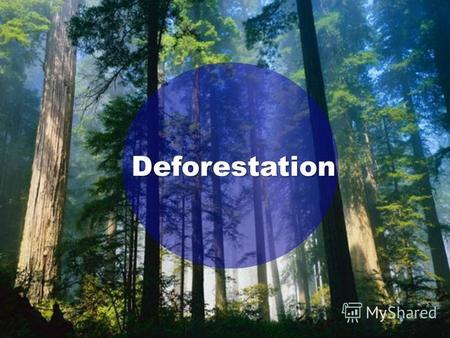 Deforestation. What is deforestation? Deforestation is cutting down whole forests of trees.