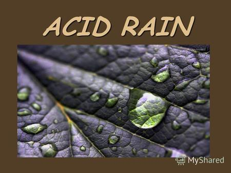 ACID RAIN Every year more and more plants and animals disappear never to be seen again.