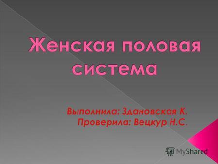 женские половые органы фото бесплатно и без регистрации