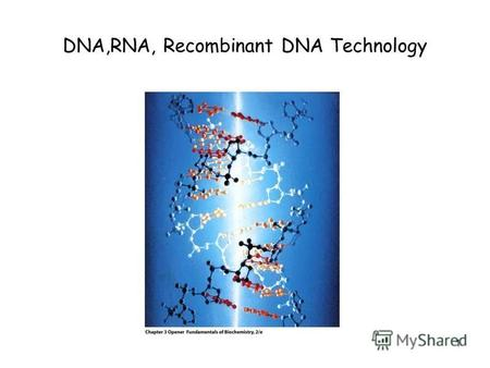 1 DNA,RNA, Recombinant DNA Technology. 2 Metabolic pathways expanded.