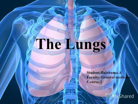 The Lungs Student:Baizhuma.A Faculty: General medicine Course:2.
