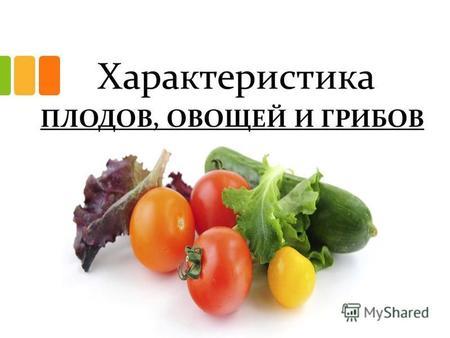Армянские блюда лобио