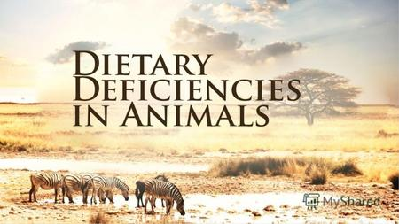 Dietary deficiencies in animals