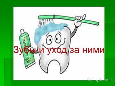 Реферат зубы и уход за ними 2693