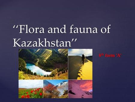 { Flora and fauna of Kazakhstan 8 th form A. Let start our lesson with the poem Wild Kingdom All woods are home for animals, So we behaved like quests.