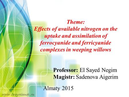Professor: El Sayed Negim Magistr: Sadenova Aigerim Almaty 2015 Theme: Effects of available nitrogen on the uptake and assimilation of ferrocyanide and.