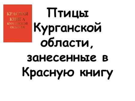 Презентация на тему ПТИЦЫ Доклад подготовлен ученицей А  Птицы Курганской области занесенные в Красную книгу
