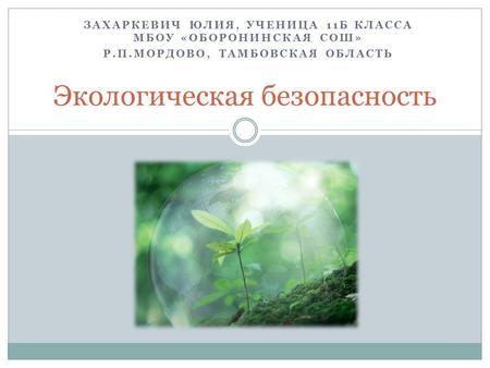 Презентация на тему Экология Экологические проблемы  Экологическая безопасность