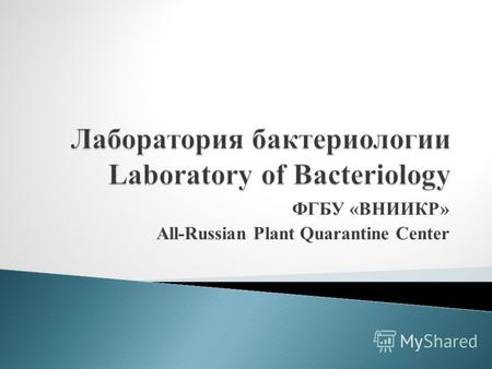 ФГБУ «ВНИИКР» All-Russian Plant Quarantine Center.