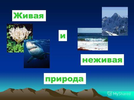 Тематические картинки неживая природа