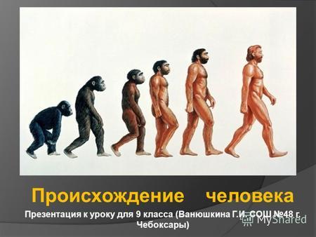 Презентация на тему происхождение человека