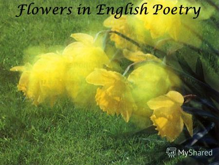Flowers in English Poetry. You like flowers, dont you? What flowers do you like? Whats your favourite one? Do you grow flowers? Look after them? Do you.