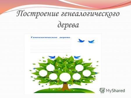 Шежере Дерево Образец Фото - фото 11