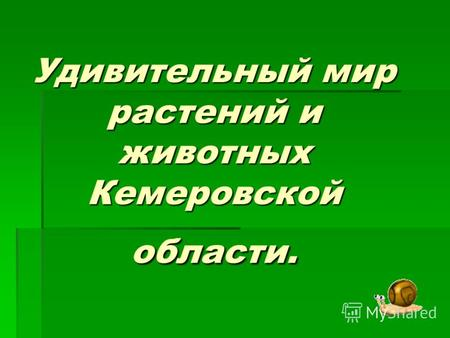 Растения Кемеровской Области Занесенные В Красную Книгу Текст И Изображение