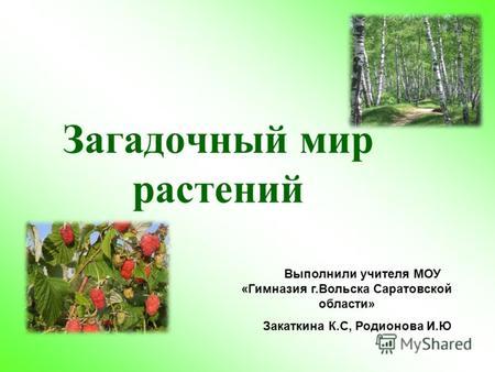 Реферат на тему мир растений вокруг нас 1180