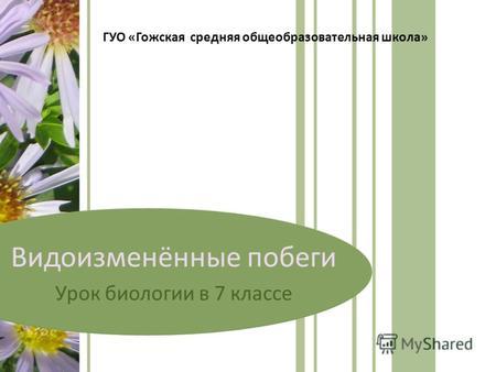 хомутовский-район.рф/files/download/2552/f6b6112e
