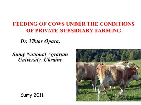 FEEDING OF COWS UNDER THE CONDITIONS OF PRIVATE SUBSIDIARY FARMING Dr. Viktor Opara, Sumy National Agrarian University, Ukraine Sumy 2011.
