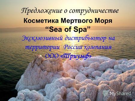 Презентация на тему мертвое море