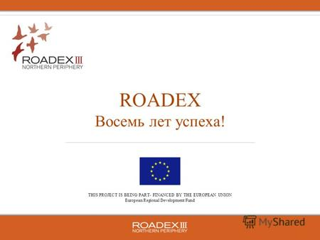 THIS PROJECT IS BEING PART- FINANCED BY THE EUROPEAN UNION European Regional Development Fund ROADEX Восемь лет успеха!