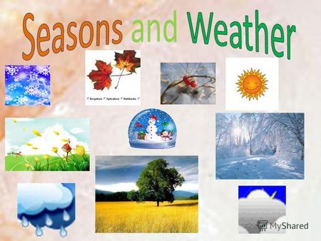 There are 4 seasons in the year: WINTER SPRING SUMMER AUTUMN.