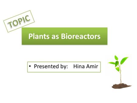 Plants as Bioreactors Presented by: Hina Amir. A Bioreactor is a device or vessels which are designed to obtain an effective environment for conversion.