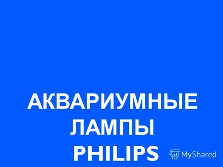 АКВАРИУМНЫЕ ЛАМПЫ PHILIPS. René SijbenAthene – Sep 20032 AQUA – RELLE, CORAL, SKY.
