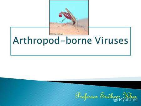 Professor Sudheer KherArthropod-borne viruses (Arboviruses) are viruses that can be transmitted to man by arthropod vectors. The WHO definition is as follows.