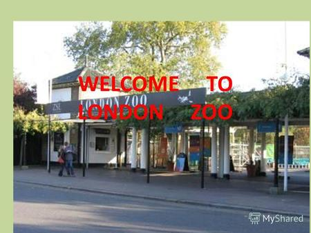 WELCOME TO LONDON ZOO. London Zoo is one of the most famous of all London attractions. It is situated in Regents Park and was opened in 1828 by the Zoological.