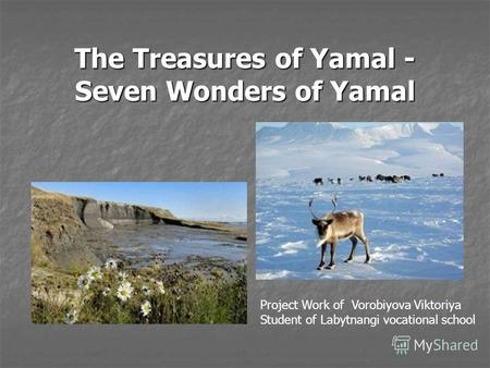 The Treasures of Yamal - Seven Wonders of Yamal Project Work of Vorobiyova Viktoriya Student of Labytnangi vocational school.