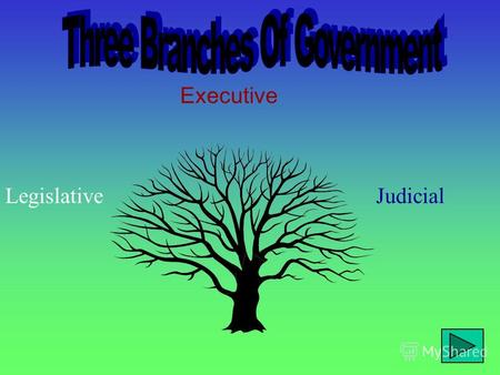 Executive LegislativeJudicial In the United States of America, a democracy, a system of checks and balances makes sure that no one branch of government.