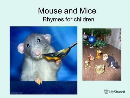 Mouse and Mice Rhymes for children. A Brave Mouse I am a brave, brave Mouse. I am marching through the house. All day long I dance and sing. Im not afraid.