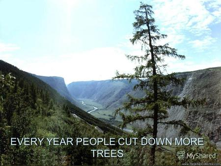 EVERY YEAR PEOPLE CUT DOWN MORE TREES. FORESTS THE SIZE OF BELGIUM ARE DESTROYED EVERY YEAR.