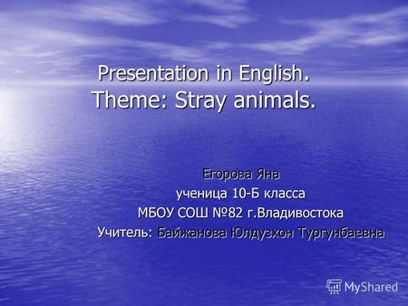 Presentation in English. Theme: Stray animals. Егорова Яна ученица 10-Б класса МБОУ СОШ 82 г.Владивостока Учитель: Байжанова Юлдузхон Тургунбаевна.