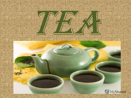 TEA A strong and energizing drink, tea is made by soaking the leaves of the tea plant in hot water. Tea is especially popular in Asia, the United Kingdom,